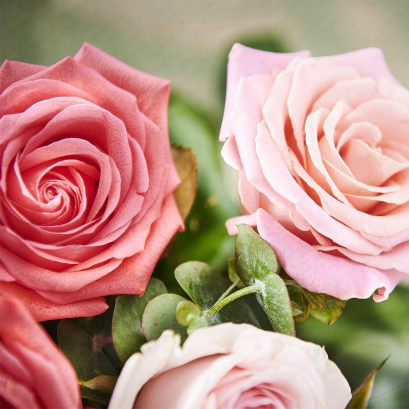 Illustration #4 La Vie en Rose