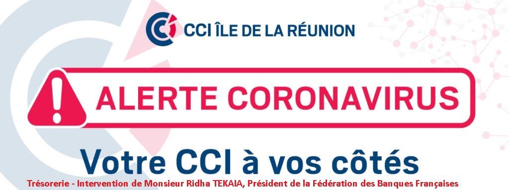 Trésorerie – Intervention de Monsieur Ridha TEKAIA, Président de la Fédération des Banques Françaises